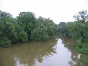 Donauhochwasser in Regensburg