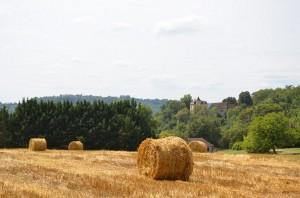 Landschaft bei Vitrac