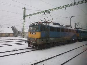 P1010018
