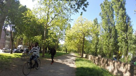 Auf der Stadtmauer von Ferrara